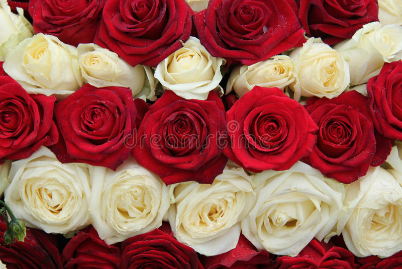 Ślubny centerpiece w czerwonym i białym obraz royalty free