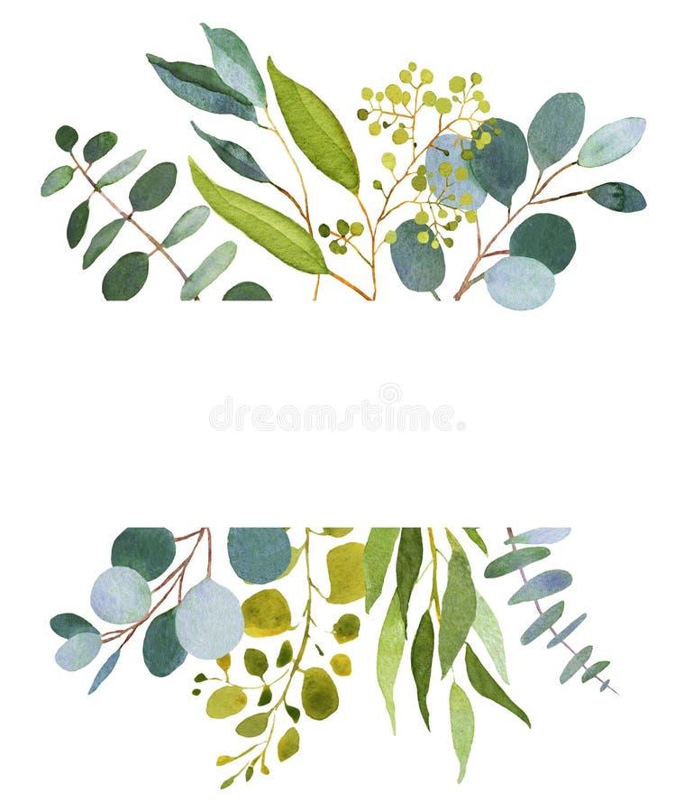 Ślubny greenery Eucalkyptus szablon ilustracji