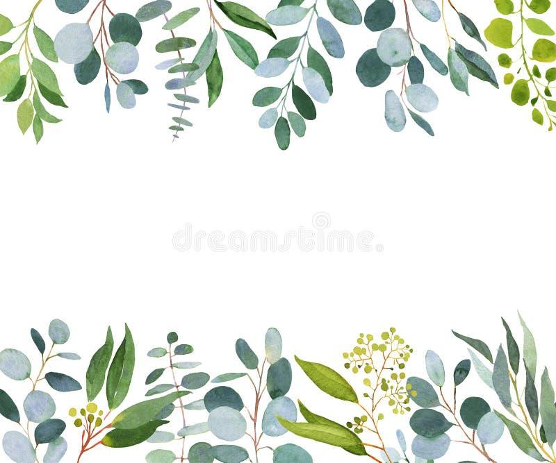 Ślubny greenery szablon Akwareli ilustracja z eucalypt royalty ilustracja