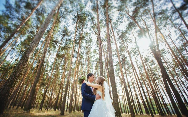 Ślubny spacer na naturze zdjęcia stock