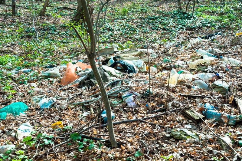 Śmieci w lasowym natury zanieczyszczeniu fotografia royalty free
