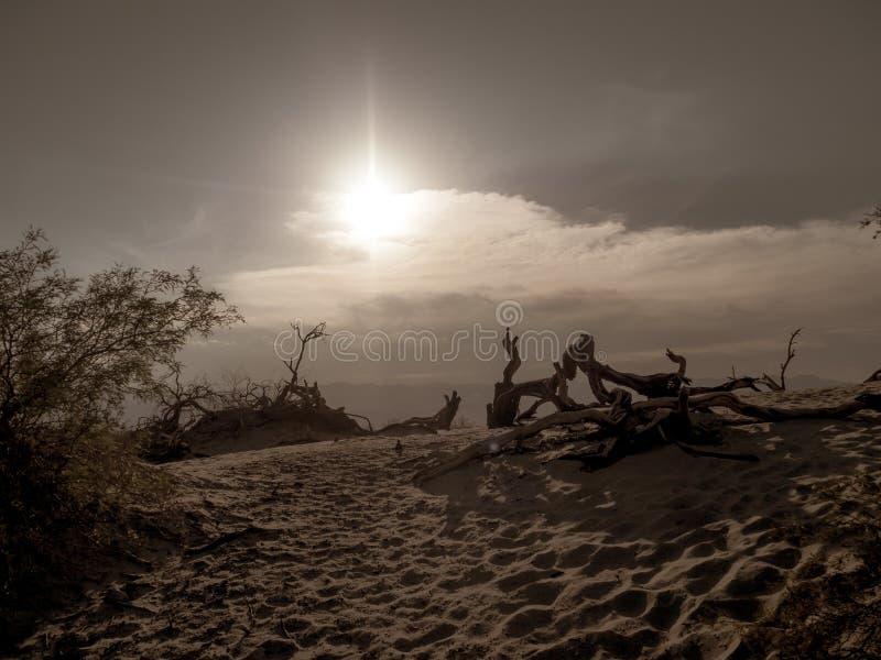 Śmiertelny Dolinny park narodowy, Mojave pustyni drogowy westchnienie, Kalifornia, usa: Gorący miejsce na planety ziemi fotografia stock