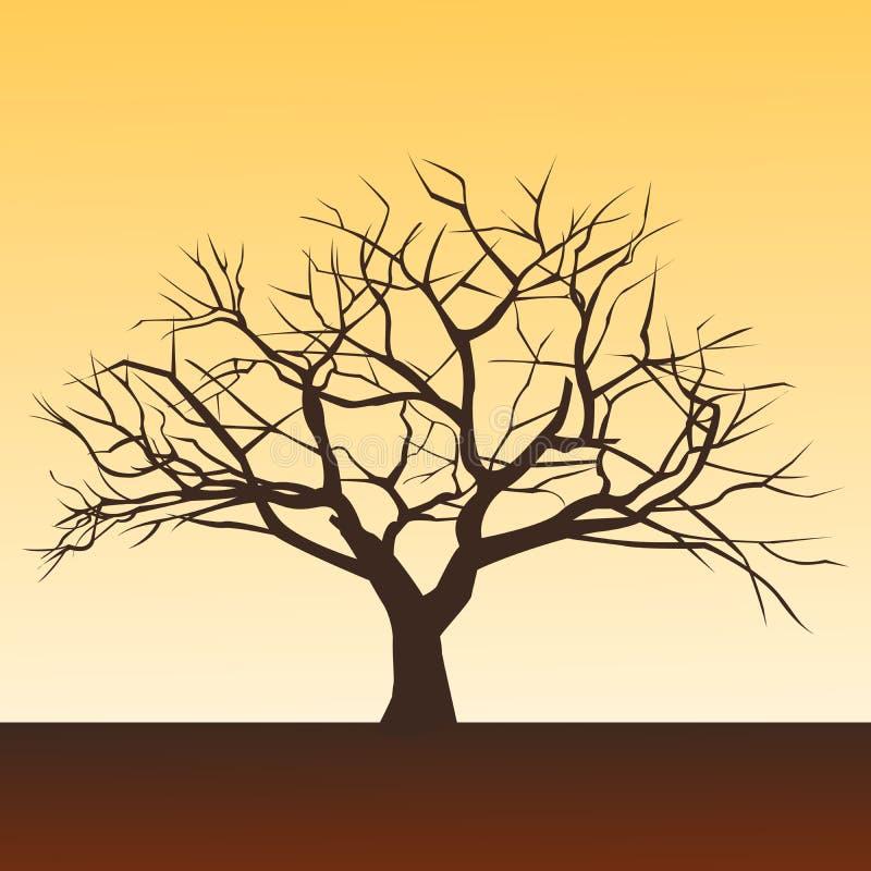 Śmiertelny drzewo obraz royalty free