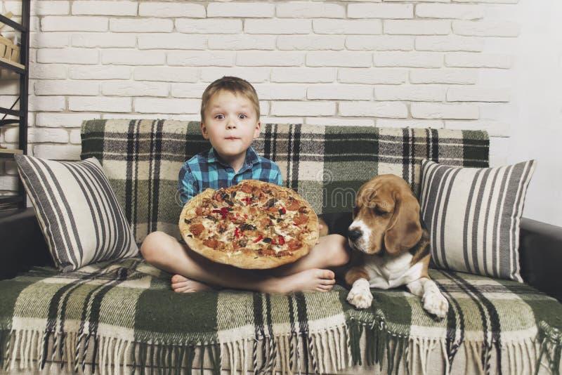 Śmieszna chłopiec i psa beagle łasowania pizza zdjęcia stock