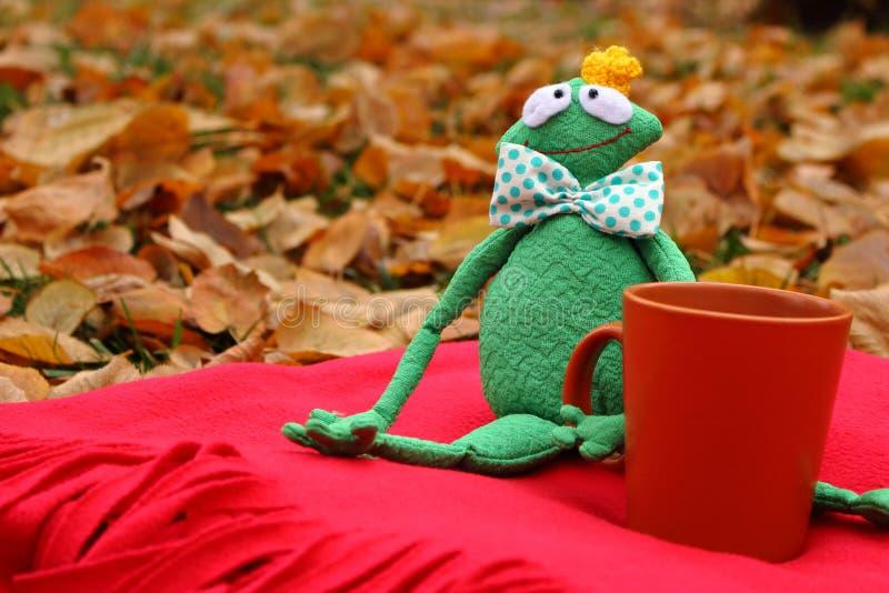 Śmieszna miękkiej części zabawki książe żaba z filiżanką herbata czeka na czerwonym chodniku, spadać liściach i obraz royalty free