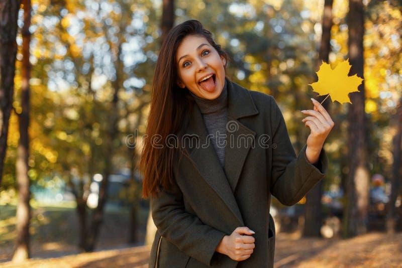 Śmieszna piękna szczęśliwa młoda kobieta w modnym żakiecie pokazuje jęzoru i mienia jesień w parku żółty liść Rozochocona emocja zdjęcia stock