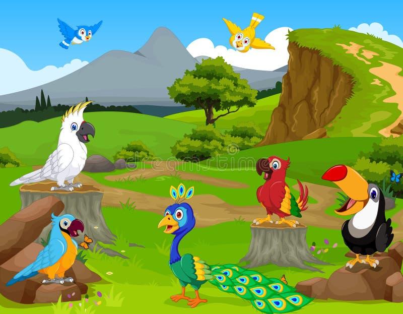 Śmieszna różna ptak kreskówka jakby dżungla z krajobrazowym tłem ilustracji
