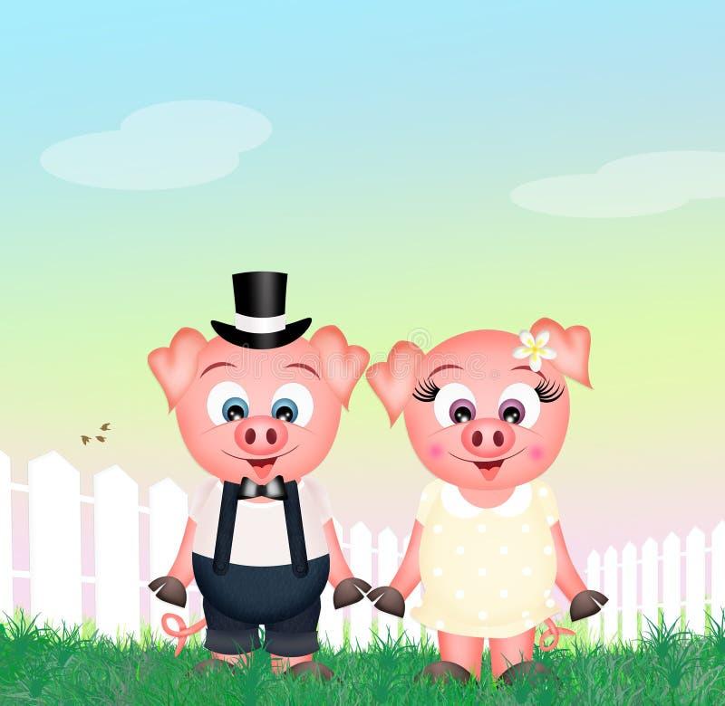 śmieszne świnie ilustracja wektor