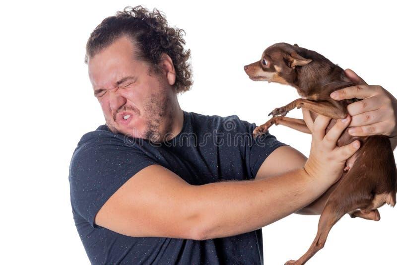 Śmieszne grube mężczyzna pozy z małym psem na białym tle zdjęcie stock
