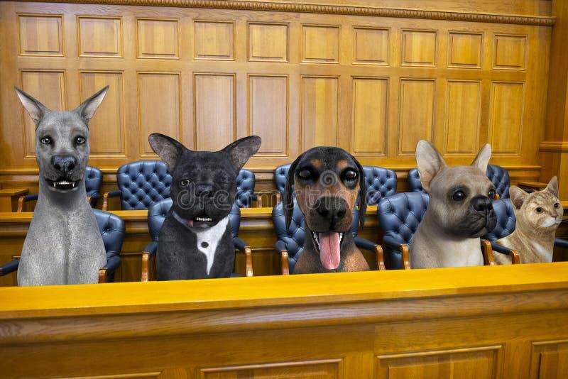 Śmiesznego Psiego kota sala sądowej Z ławą przysięgłych próba fotografia royalty free