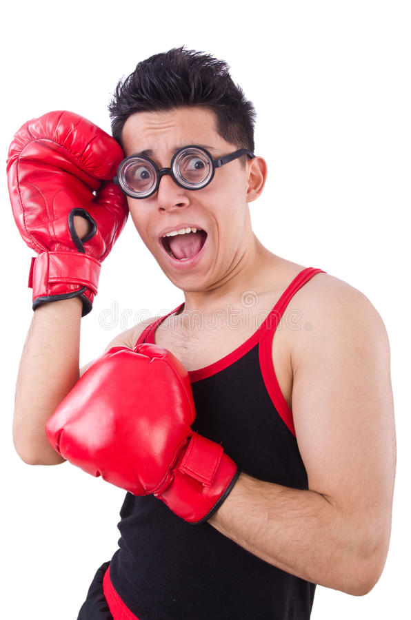 Śmieszny bokser fotografia stock
