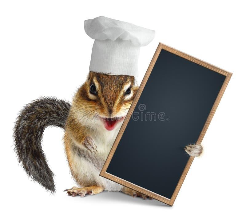 Śmieszny chipmunk z szefa kuchni kucharza kapeluszowego chwyta menu pustym blackboard ilustracja wektor