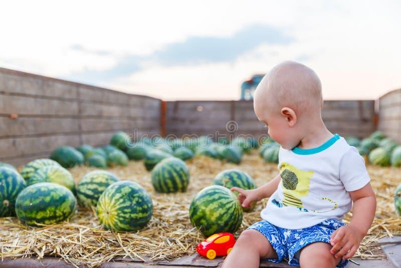 Śmieszny dzieciak siedzi w ciągnikowej furze z arbuzami zdjęcie stock