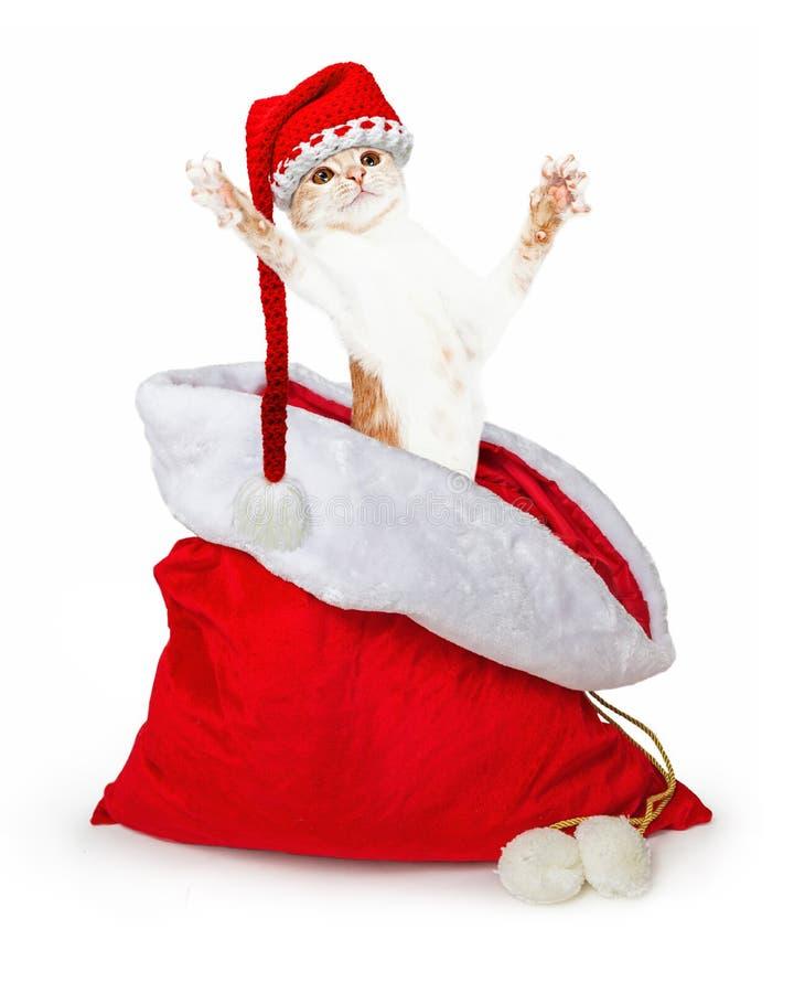 Śmieszny figlarki doskakiwanie Z Santa prezenta Bożenarodzeniowej torby fotografia stock