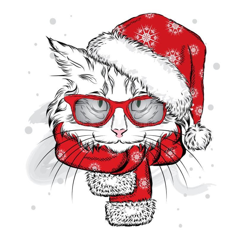Śmieszny kot w Bożenarodzeniowym szaliku i kapeluszu ilustracja wektor