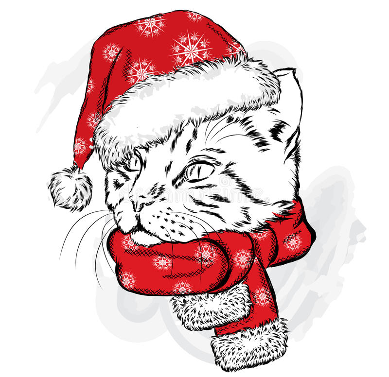 Śmieszny kot w Bożenarodzeniowym szaliku i kapeluszu royalty ilustracja