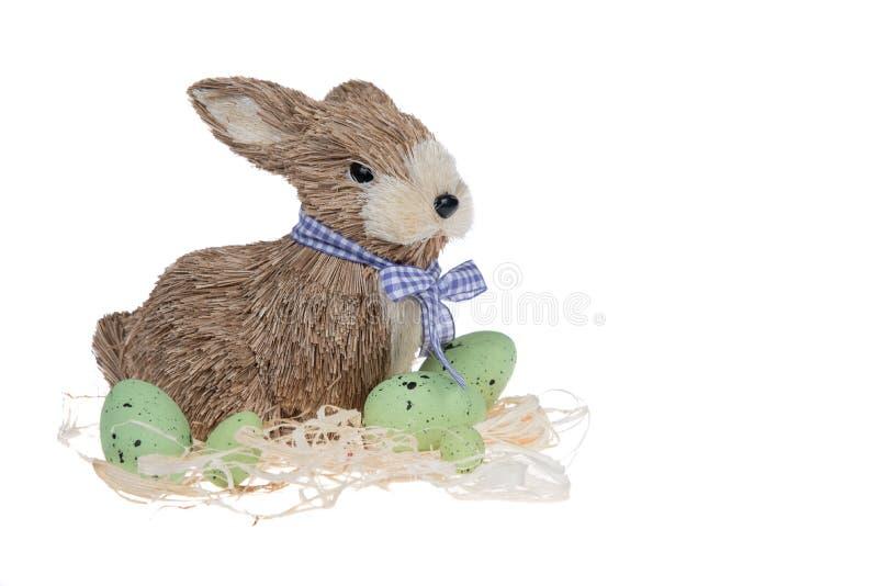 Śmieszny mały królik wśród Wielkanocnych jajek w welur trawie odizolowywającej na bielu zdjęcia stock