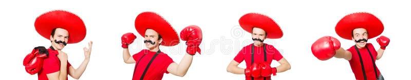 Śmieszny meksykanin z bokser rękawiczkami odizolowywać na bielu zdjęcie royalty free