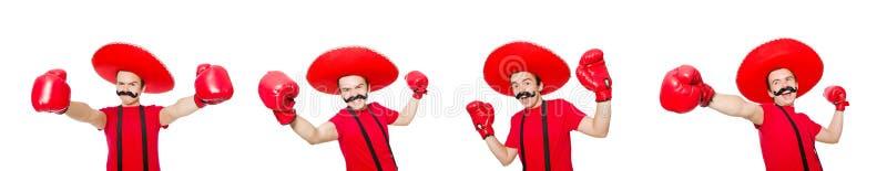 Śmieszny meksykanin z bokser rękawiczkami odizolowywać na bielu zdjęcia royalty free