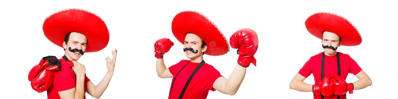 Śmieszny meksykanin z bokser rękawiczkami odizolowywać na bielu zdjęcia stock