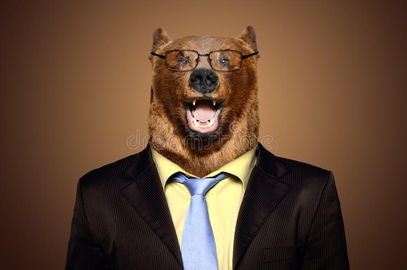 Śmieszny niedźwiedź w garniturze fotografia royalty free
