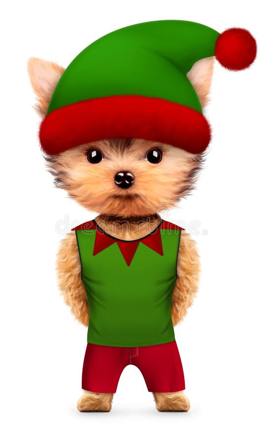 Śmieszny Psi Santa ` s elf z kapeluszem Bożenarodzeniowy pojęcie royalty ilustracja