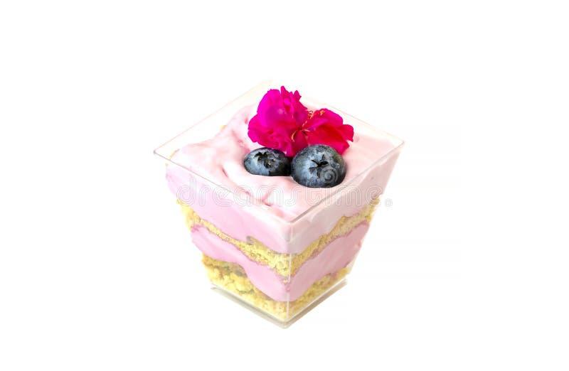 Śmietankowy kremowy deser w plastikowej filiżance dekorował z jagodami obrazy royalty free
