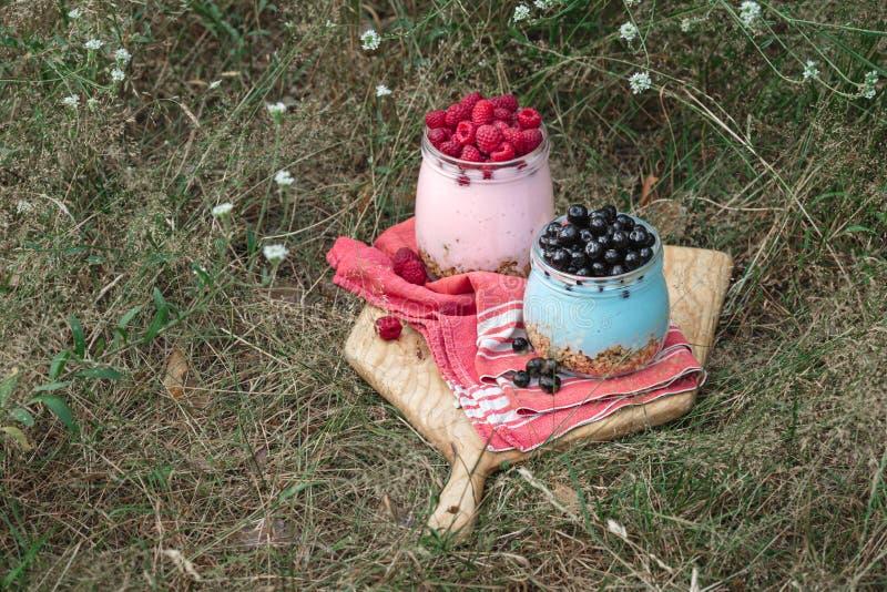 Śniadanie zdrowej żywności Jogurt babolski z jagodami domowymi i malinkami w szklanym słoiku w trawie fotografia stock