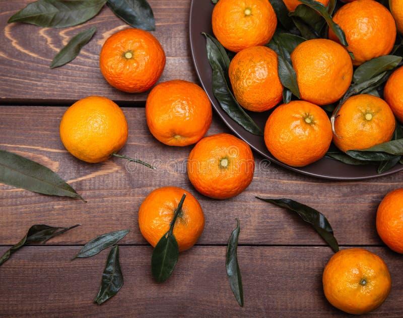 Śniadanio-lunch tangerines obraz stock