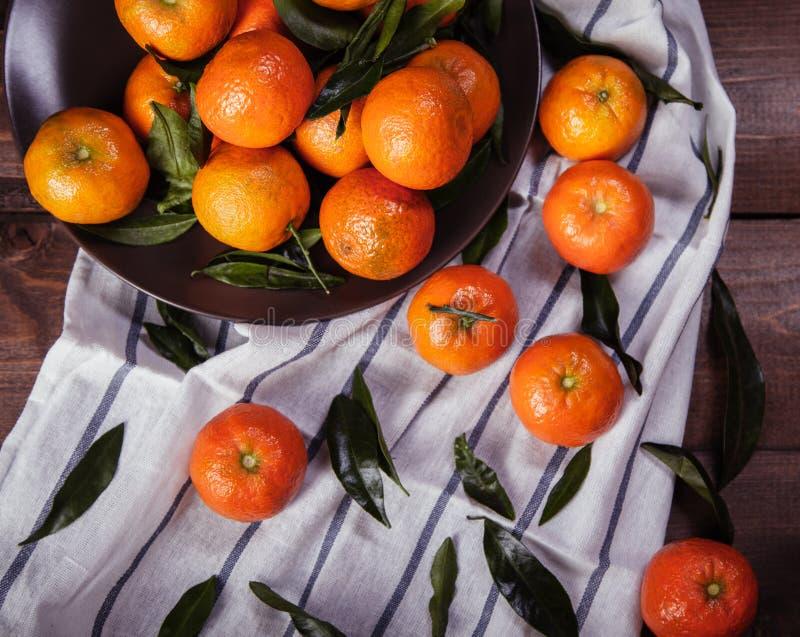 Śniadanio-lunch tangerines fotografia royalty free