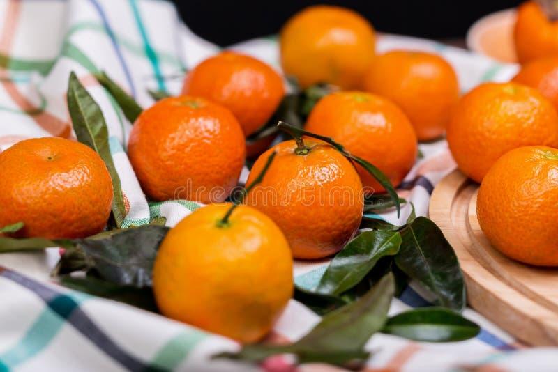 Śniadanio-lunch tangerines obrazy stock