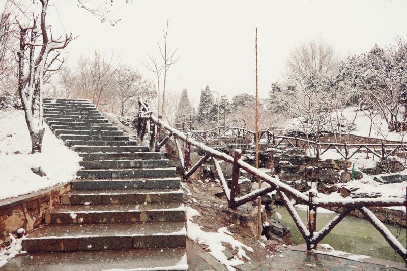Śnieżna ścieżka i kroki obraz stock