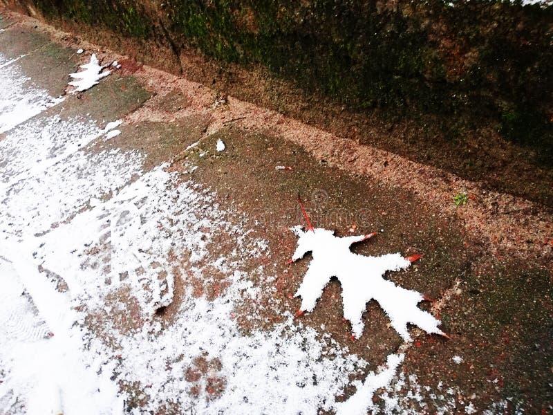 Śnieżna aplikacja Sztuka w zimie Zimy fotografia wakacyjny czekanie fotografia stock