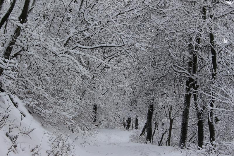 Śnieżna Belasitsa góra w Styczniu 2019 nad Petrich, Bułgaria zdjęcia stock