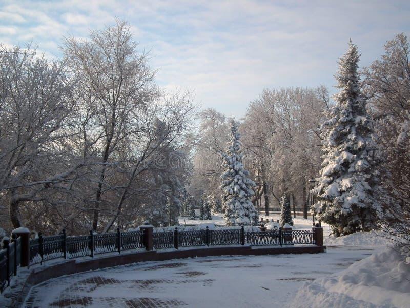 Śnieżna czarodziejka! Zima ranek na nabrzeżu w Ulyanovsk, Rosja obraz stock