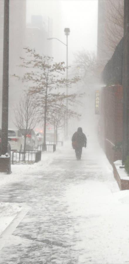 Śnieżna dnia wierzchu wschodnia część obraz royalty free