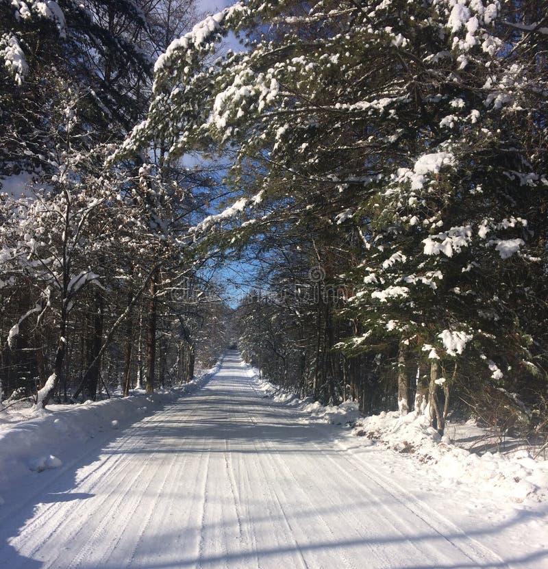 Śnieżna droga gruntowa w Vermont obraz royalty free