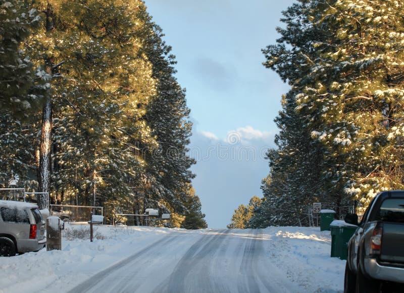 Śnieżna droga w flagstendze, Arizona zdjęcia stock