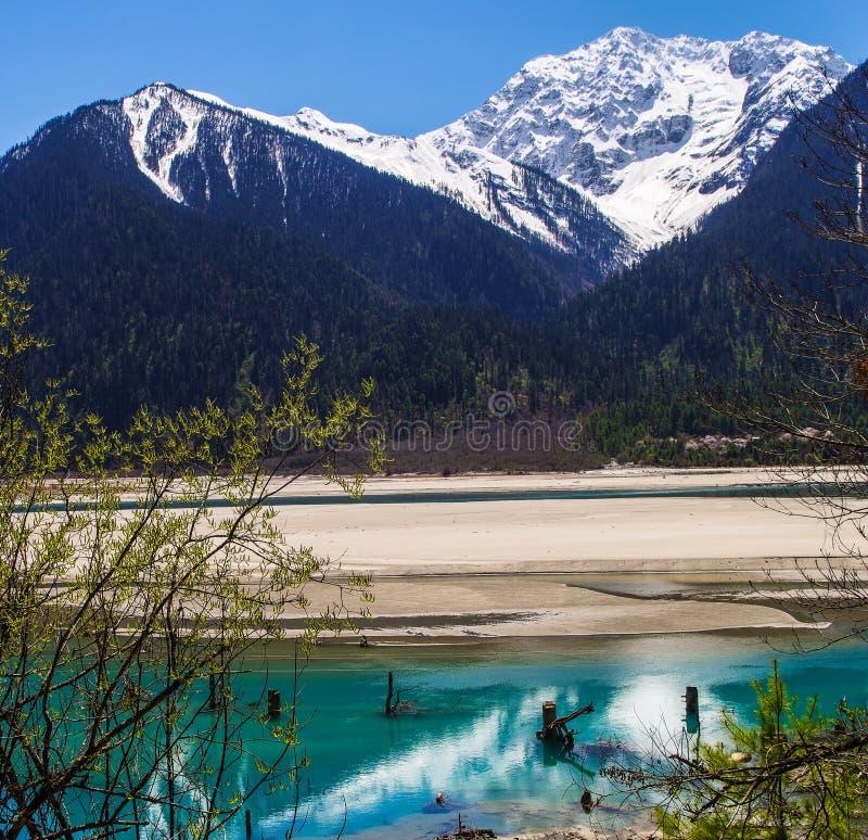 Śnieżna góra, jasny rzeki jar zielony krajobraz obrazy stock