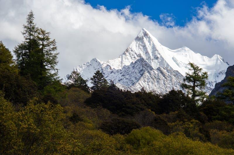 Śnieżna góra w jesieni w Yading Krajowej rezerwie, Sichuan, Ch fotografia stock