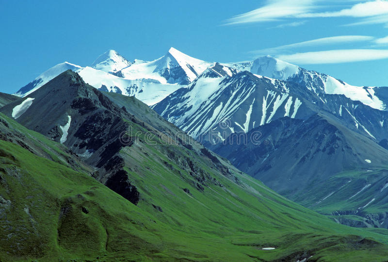 śnieżna góry tundra fotografia royalty free