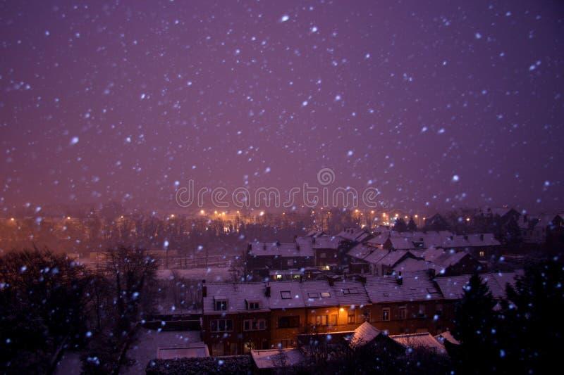 śnieżna noc zima fotografia royalty free