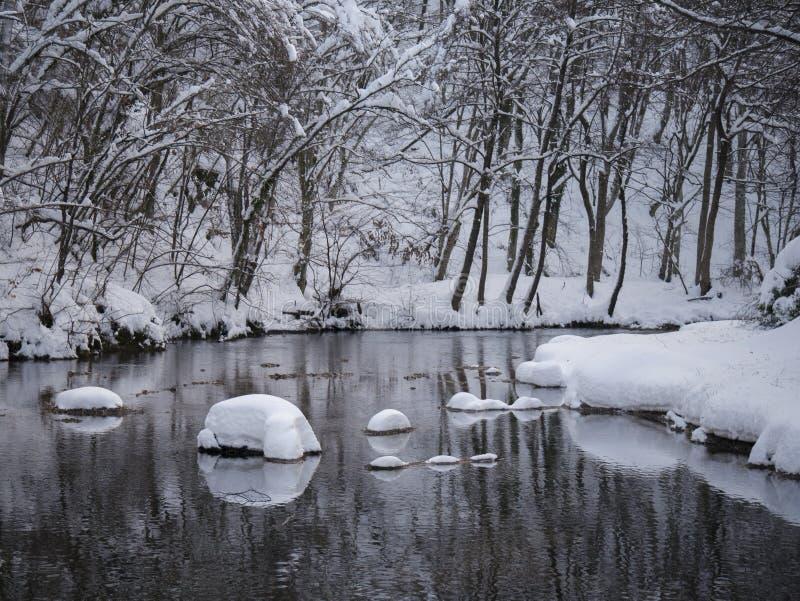 Śnieżna rzeka zdjęcie royalty free