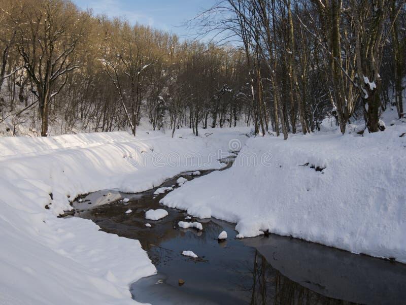 Śnieżna rzeka zdjęcia stock