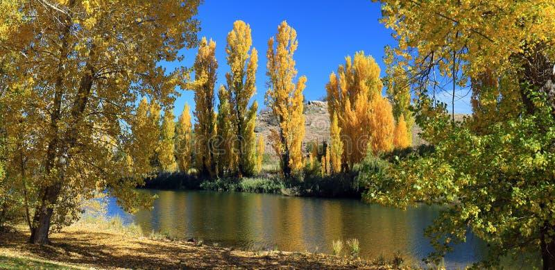 Śnieżna rzeka, Dalgety, Australia w jesieni obrazy stock