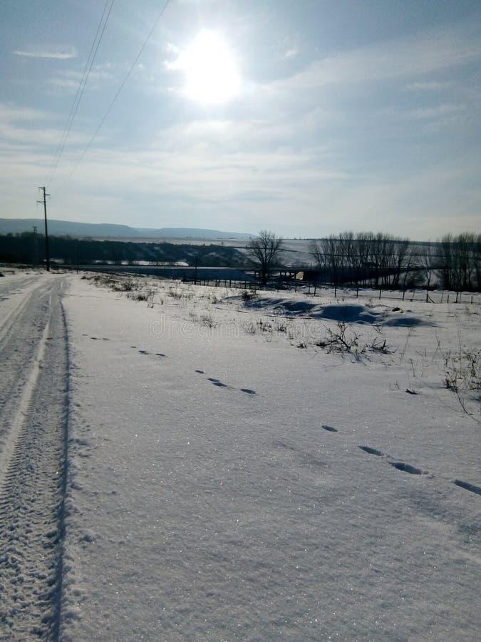 Śnieżna scena, zdjęcie stock