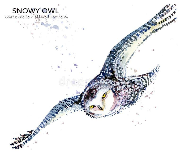 Śnieżna sowy akwareli ilustracja biegunowy ptaka royalty ilustracja