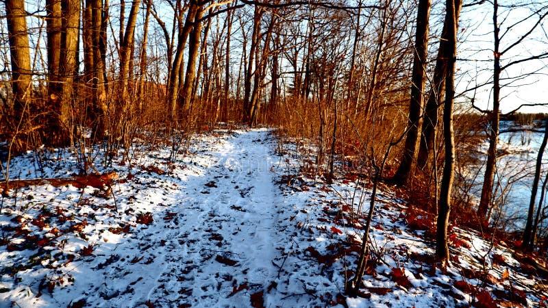 Śnieżna spadek ścieżka w Kanada zdjęcia royalty free