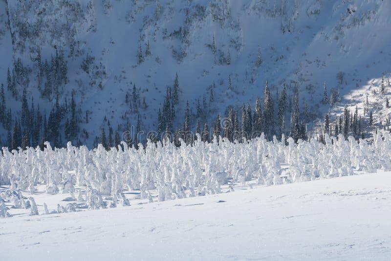 Śnieżna struktura z światłem słonecznym w tle, panorama śnieg dziury Z Wawel nadajnikiem - Krkonose giganta góry zdjęcie royalty free