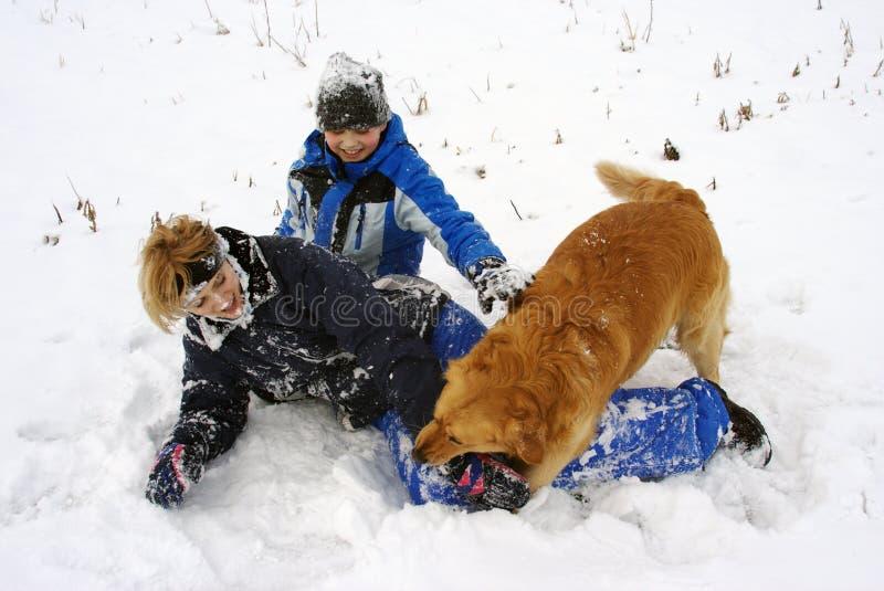 Śnieżna zabawa z psem zdjęcie royalty free